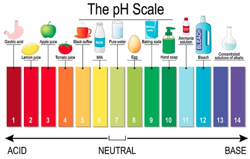 scale of ph