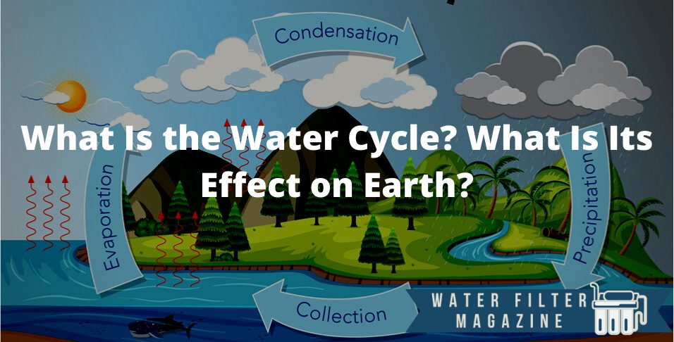 water cycle and its effect on Earth